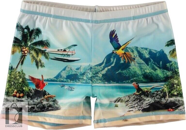 Molo Norton Placed Welcome To Hawaii шорты